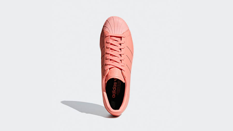 adidas pajkice hervis pants shoes sale free 2017 Womens | Where To ...