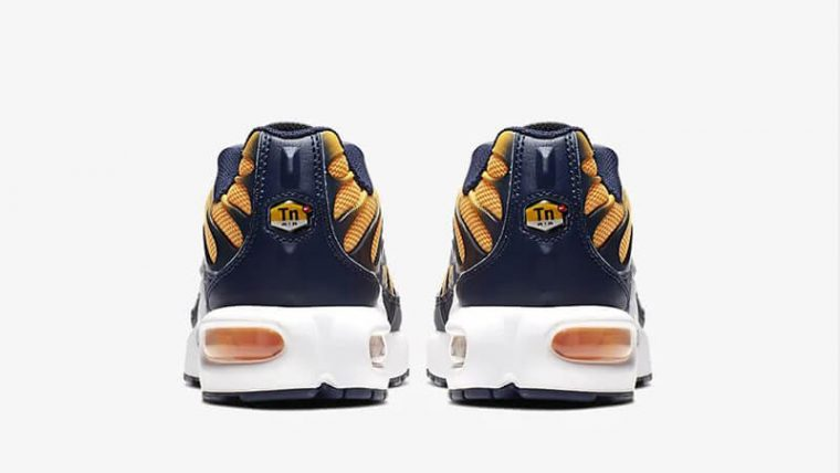 Nike TN Air Max Plus RF Orange Navy BV0047-800 back thumbnail image