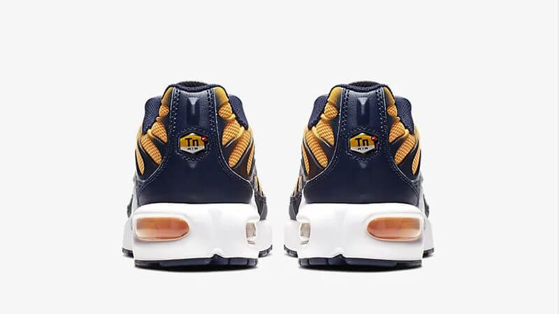 Nike TN Air Max Plus RF Orange Navy BV0047-800 back