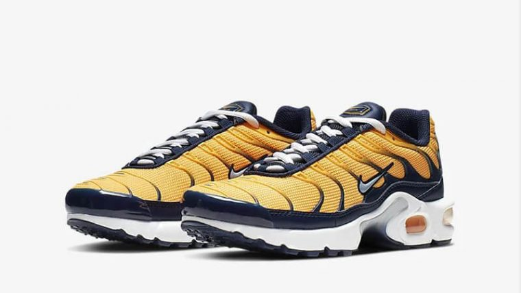 Nike TN Air Max Plus RF Orange Navy BV0047-800 front thumbnail image