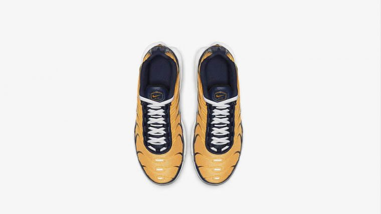 Nike TN Air Max Plus RF Orange Navy BV0047-800 middle thumbnail image