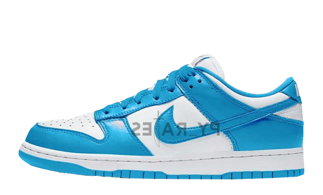 Nike Dunk Low Retro University Blue